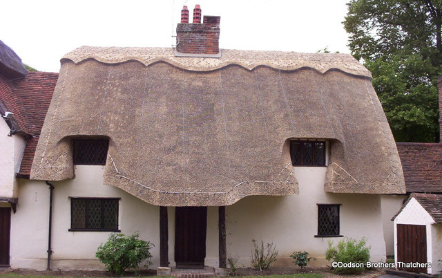Modern Thatched Roof Traditional Exterior East