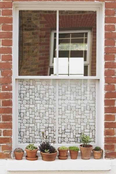 Trellis windows for Window trellis design