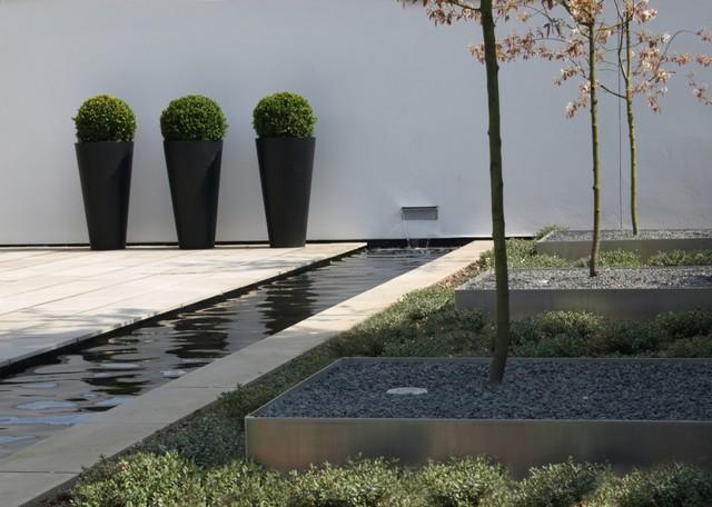 Jardines, terrazas y piscina exotico-jardin