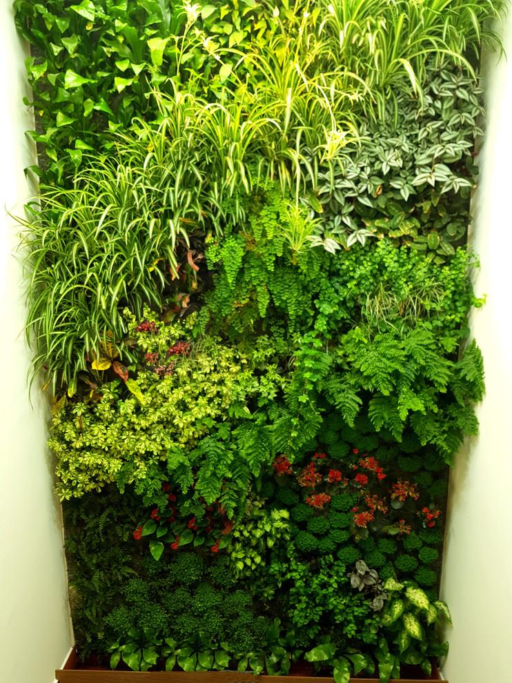 Foto de jardín actual, pequeño, con jardín vertical