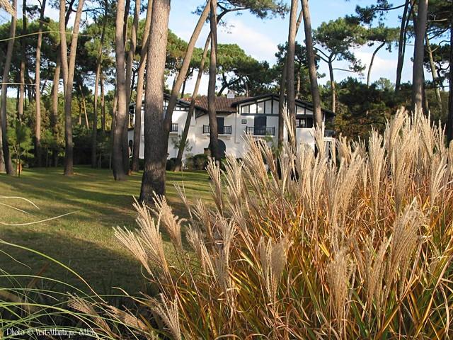 Am nagement ext rieur villa anglet bord de mer jardin bordeaux par ve - Amenagement exterieur villa ...