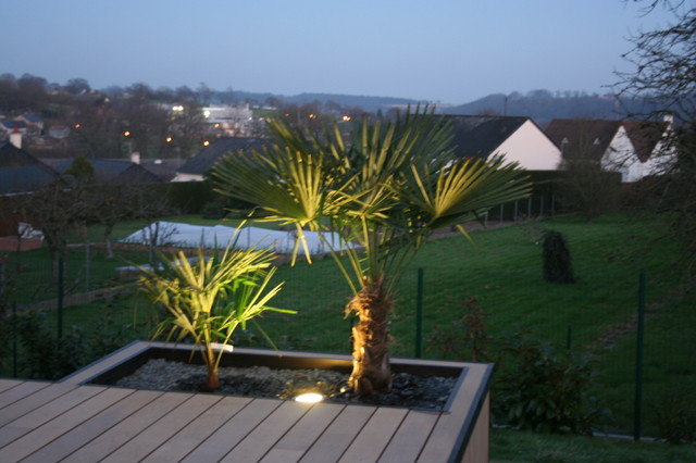 Composite ardoise et palmier contemporain jardin for Decoration jardin palmier