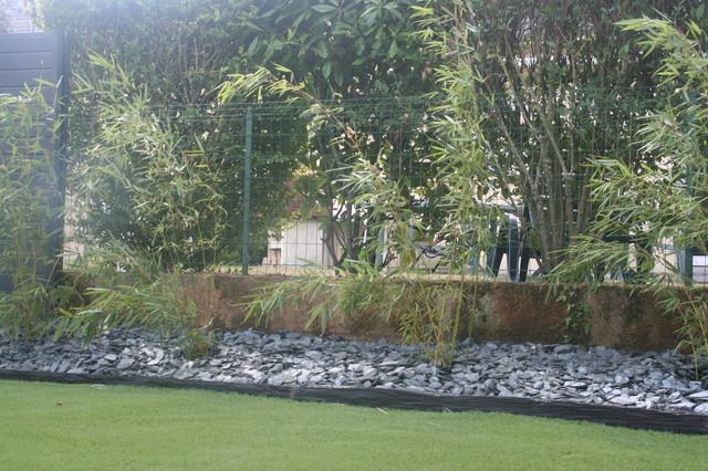 Haie de bambou - Contemporain - Jardin - Angers - par EURL OLIVIER ...
