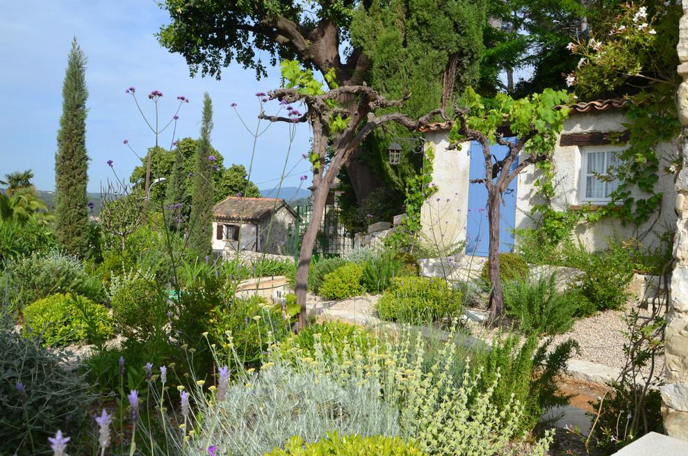 Jardin Sec Pittosporum Tobira Verbena B Helichrysum