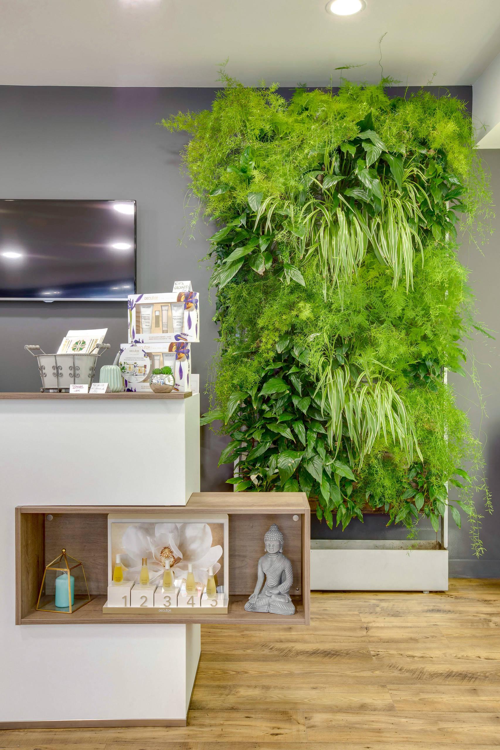 """Mur végétal intérieur """"1 ère Edition"""" J+365"""
