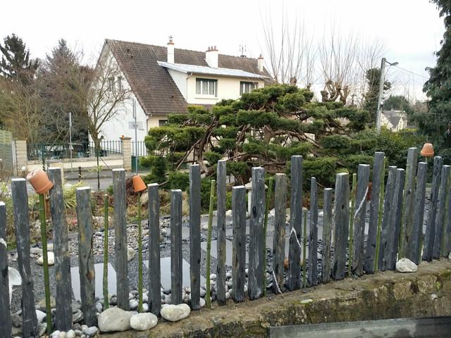 Palissade - Moderne - Jardin - Grenoble - par Chlorophylle