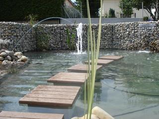 Pas japonais sur l 39 eau jard n dijon de gey for Jardin japonais dijon