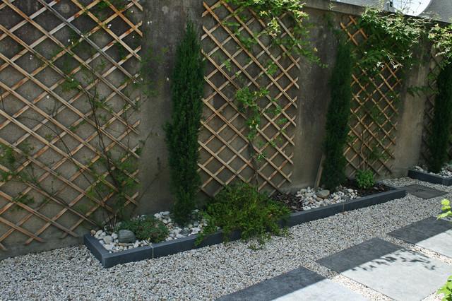 Plantes grimpantes moderne jardin dijon par perret for Plante jardin moderne