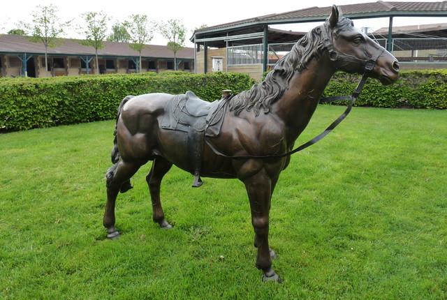 D coration jardin cheval for Ane decoration jardin