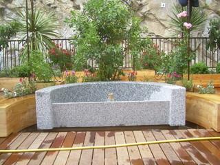 toit terrasse exotique jardin toulouse par arnaudies paysagiste. Black Bedroom Furniture Sets. Home Design Ideas