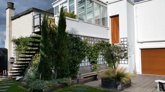 un jardin champ tre m diterran en jardin paris par roots paysages. Black Bedroom Furniture Sets. Home Design Ideas