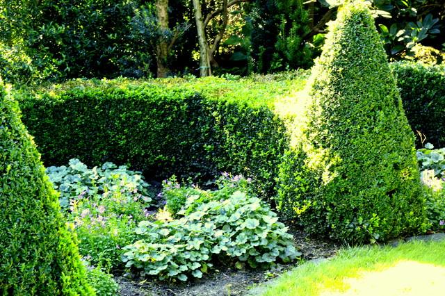 Visite priv e oprins jardin paris par patricia for Jardin a visiter 78