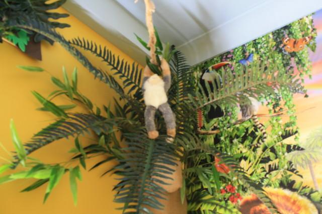 Jungle Theme Childrens Playroom Bedroom