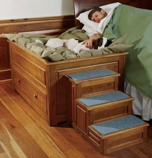 For little dogs I love this doggy bed beside a bed idea that even has stairs to climb up and sleep beside their masters.