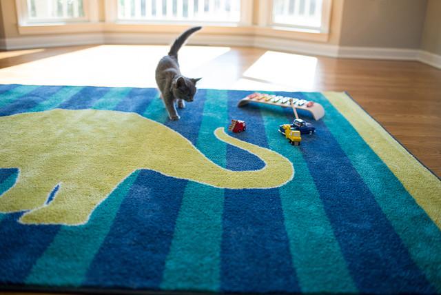 Friendly Dinosaur Area Rug By Mohawk Home Kids Atlanta By Mohawk Home