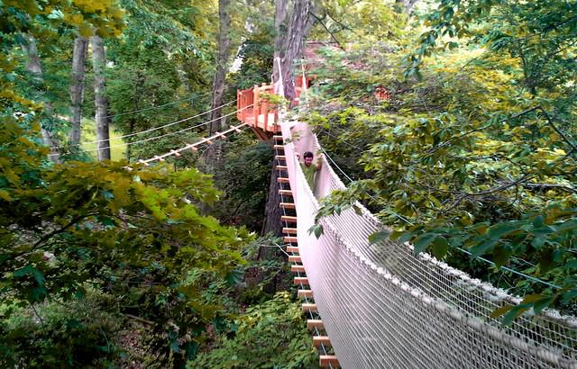 Newtown Square, PA Rope Bridge Treehouse on tree house boat design, tree shaped bookshelf, japanese garden bridge design, tree fort rope bridge,