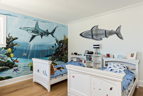 Shark Shelf