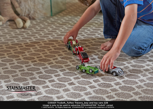 Stainmaster PetProtect Carpet Contemporary Kids