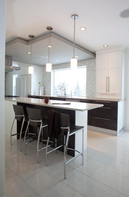 03-Warm Contemporary Kitchen contemporary-kitchen