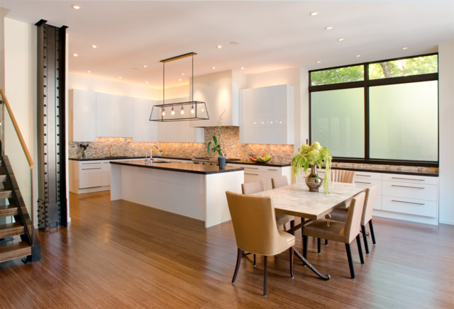 2. Chicago Renovation contemporary-kitchen