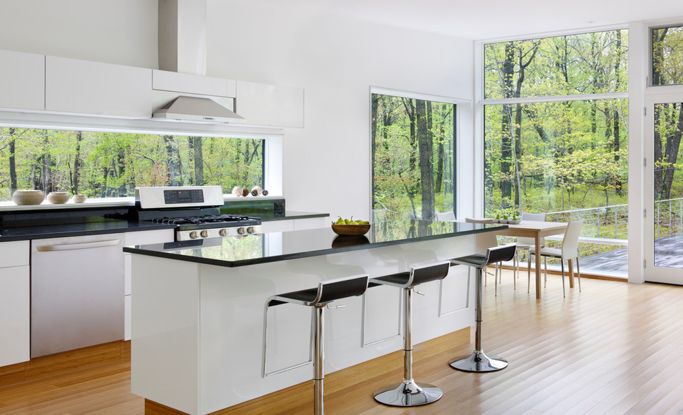 Minimalist eat-in kitchen photo in New York with flat-panel cabinets and stainless steel appliances