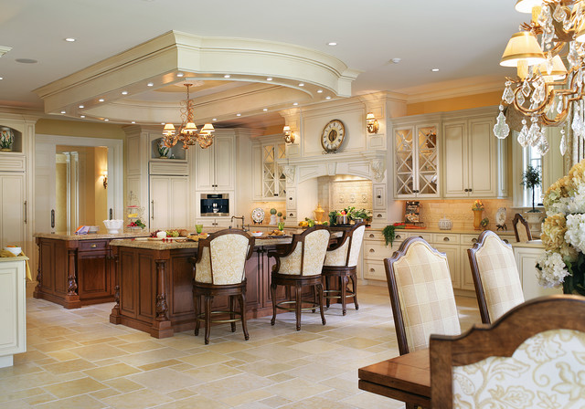 2010 award winning house traditional kitchen new for Award winning kitchen designs 2010