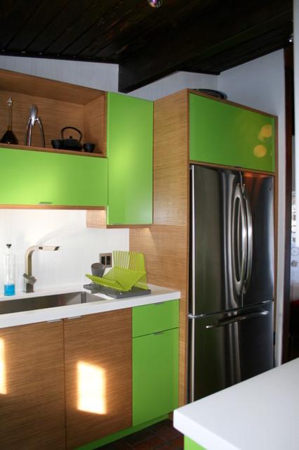 2011 Contemporary Living contemporary-kitchen