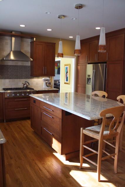 3972 contemporary-kitchen
