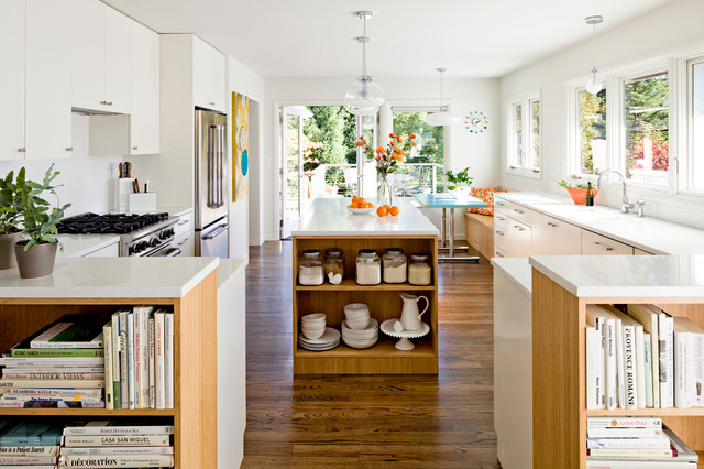 50s remodel contemporary-kitchen