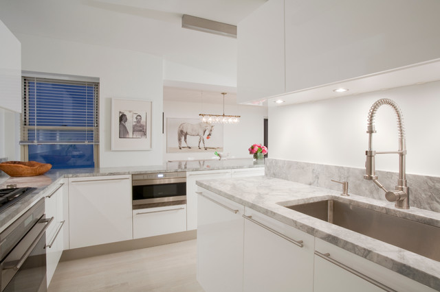 Example Of A Danish Kitchen Design In New York With Stainless Steel  Appliances And Granite Countertops