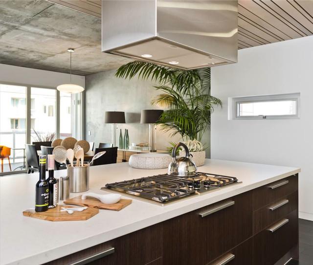 750 2nd St. San Francisco contemporary-kitchen