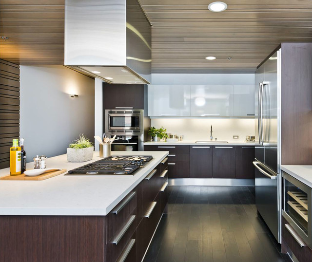 750 2nd st san francisco contemporary kitchen san francisco by european cabinets. Black Bedroom Furniture Sets. Home Design Ideas