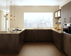 A Brush with Brass Lofty Kitchen contemporary-kitchen