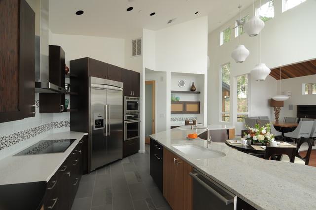 Leslie j jensen cmkbd contemporary kitchen seattle for Modern kitchen cabinets seattle