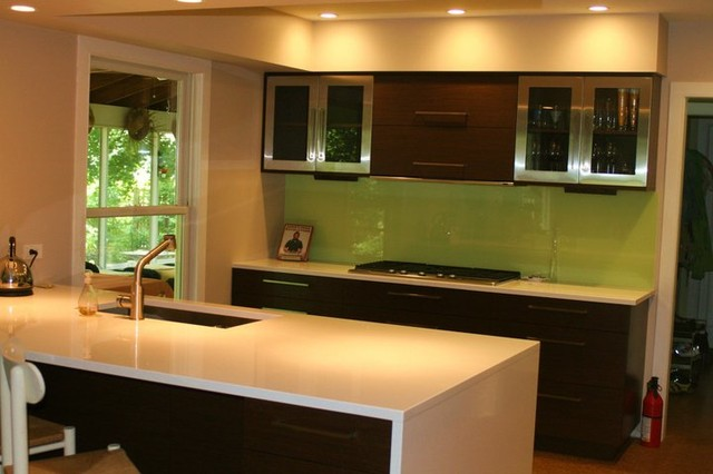 A Splash of Green in Newtown, PA contemporary-kitchen