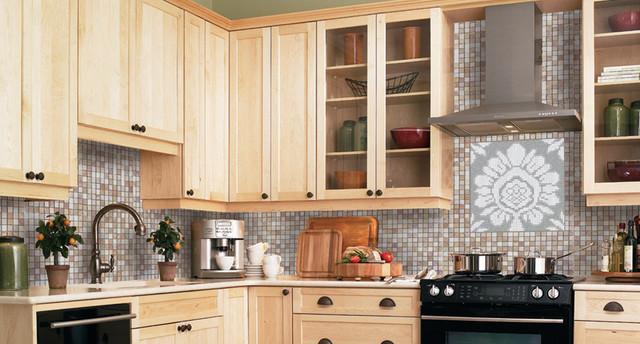 Adorn Pendant Backsplash traditional-kitchen