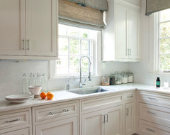 Advanced Renovation Projects traditional kitchen