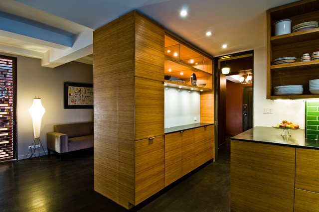 Aerated Apartment contemporary-kitchen