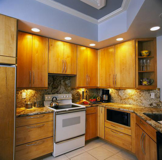 Aging in Place contemporary-kitchen