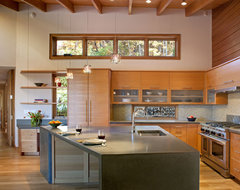 Aleph House modern-kitchen
