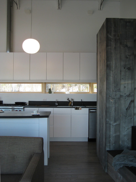 Algoma Retreat contemporary-kitchen