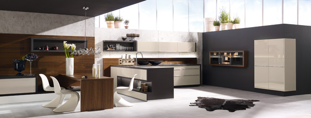 Alno Company Photos Modern Kitchen New York By Retail Sales Manager Designer Alno