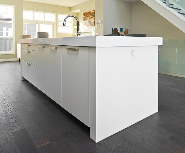 Countertop Dishwasher Calgary : ... Contemporary - Kitchen - calgary - by Rational Kitchens Calgary