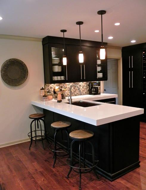 Anderson Kitchen contemporary-kitchen
