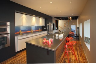 Aquarium Backsplash Pittsburgh modern kitchen