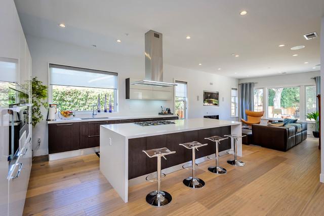 Aran Cucine Cabinets Dali And Erika Collections Modern Kitchen San Francisco By