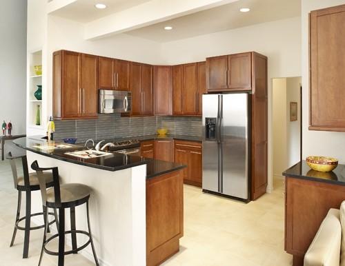 Arlington Texas kitchen designer contemporary-kitchen
