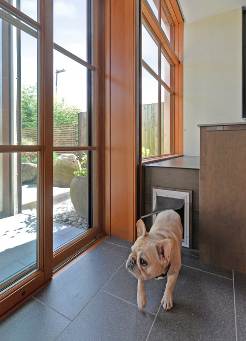 8 Types Of Pet Doors How To Choose The Best One For Your Home