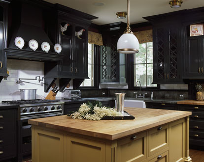 Kitchen - traditional kitchen idea in Bridgeport with black cabinets