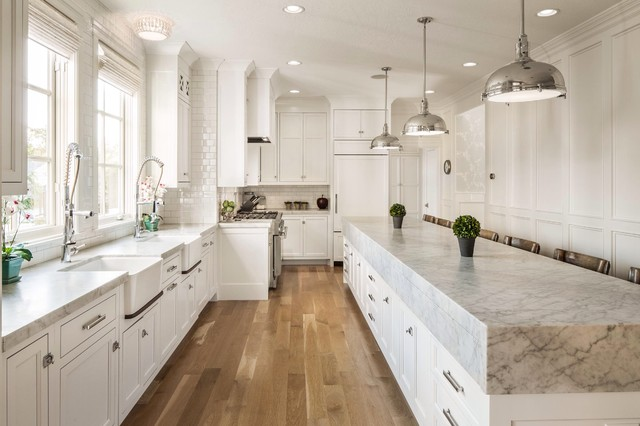 Avenues transitional-kitchen